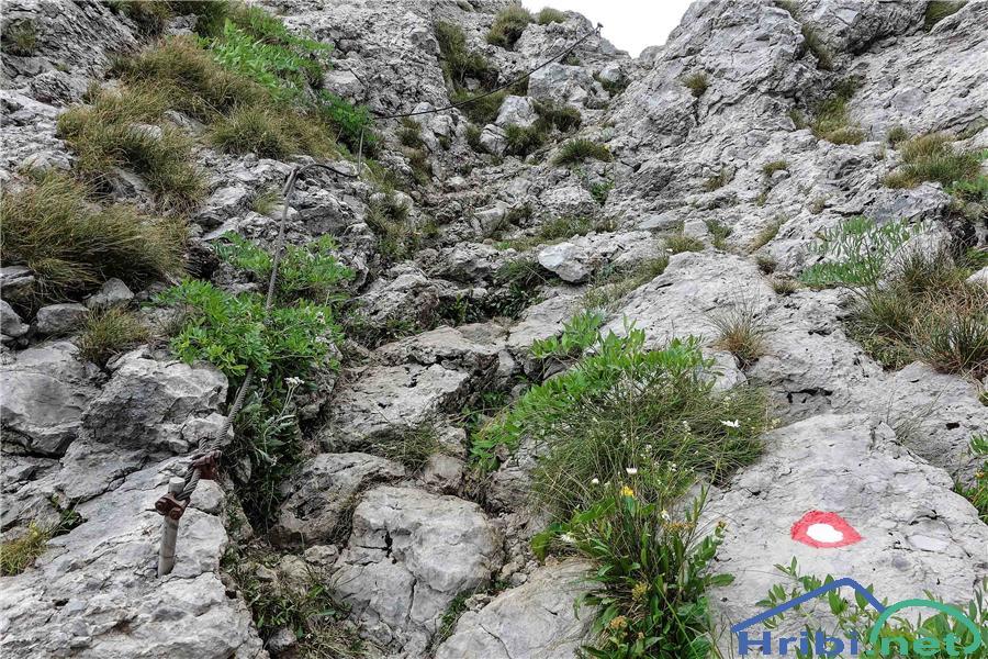 Jeklenica proti vrhu Risnjaka