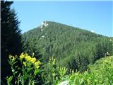 Goli vrh  1787 mnmtakole izgleda kar nedolžen Goli vrh