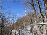 Boč - Donačka gorapot proti Balunjači