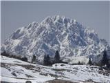 Velika planinaNikakor ne morem mimo nje