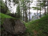 Skriti kotički v gorskem rajuna sedlu od tu levo navzgor, je strmo, ....