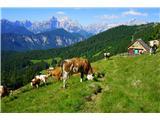 Golica- Julijci, Hruščanska planina, Mokotova bajta