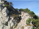 Stegovnik Pot na Stegovnik