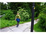 Jakobova pot  - Višarska smer- Proti Koseškemu bajerju...