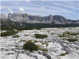 Planina Blato - celo