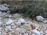 Vogel-Šija-Rodicastar prehod čez potok Suha je lani odnesla povodenj, nov prehod pa ovira podrta smreka