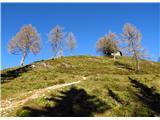 Ogradiše kratek vzpon do planine Krstenica