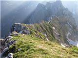 Skriti kotički v gorskem rajuto je Loška stena, bolje greben proti Plešivcu, v živo je greben hudo našpičen, strme trave.