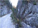 Cesta Belca-Zapornica (Belca)nazaj grede, soteska je vredna ogleda