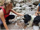Zelenjak-Palecima rada psičke