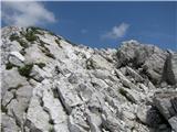 Vogel-Šija-Rodicalepo narezane skale na poti