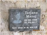Viš-po poti Anita Goitan Tatjano sem spoznal na Šmarni gori