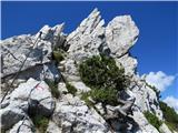 Debela peč, Brda, Lipanski vrh, Mrežcepogled nazaj