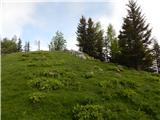 Veliki Kopinj / Kapinberg / Monte Capin di Ponente