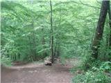 Bidrovec - planinski_dom_gorscica