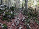 Avsa - idrska_planina