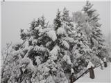 Prelaz Ljubelj (koča)Zimski utrinek