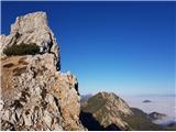 Zelenjak-PalecOvčji vrh