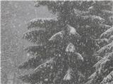 Prelaz Ljubelj (koča)Občasno je kar močno snežilo