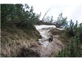 Visoki  Mavrinc - Sneg na zadnjem ovinku
