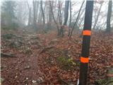 Šmarna goraOznake za Rašica trail