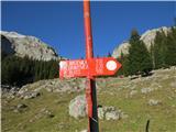 Ogradizardi kratkega dneva sem izbrala najkrajšo pot do planine Blato, zato sem se morala vrniti do razpotja nad planino