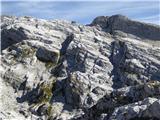Kaninski podiPogled z MGG. VGG je pod desnim (nižjim) vrhom Konjca
