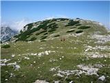 Veliki vrh, Dleskovecše proti Veliki Zelenici