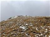 Divja koza - Cima di Riofreddo 2507 mPod vrhom