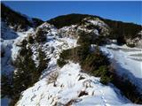 Krasji vrhkljub majhni količini snega, je bila pot nad globeljo zasnežena - tako sem prečila par korakov po vrhu za sledmi živali