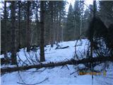 Olševa  Za silo bo, ostalo bojo naredili gozdarji