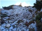 Debela peč, Brda, Lipanski vrh, Mrežcepomrznjeno