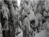 Uršlja Gora (Plešivec) 1699mUtrinek na Grofovski