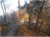 Tremerje - Hom nad Celjem