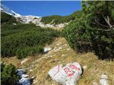 Ogradina Lazovškem prevalu se priključi markirana pot s planine V Lazu