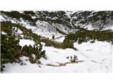 Veliki vrh (Veža)predenj smo prišli na zmrzjen sneg pod vrhom
