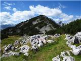 Debela peč, Brda, Lipanski vrh, Mrežcevzpon na Brda