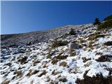 Krasji vrhgaz se je nadaljevala proti jugu in verjetno naprej po grebenu, kjer sem jo zopet našla ob sestopu
