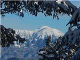 Bohinjsko sedlo - Črni vrh (nad Soriško planino)