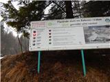 Sveta Ana (Ljubelj)4. stopnja nevarnosti plazov