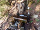 Radlje ob Dravi - kapunar