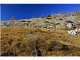 Sedmera jezeraProti Ledvički sem šel malo po svoje,veliko lepše kot po poti :)