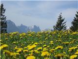Komaj čakam na pomlad. In na regrat v solat :-) Pogled s poti na Golico maja 2012.