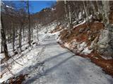 ZelenicaPo cesti manj ledu kot prejšnje dni