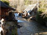 Žabnica / Bodental - kosmatica___kosmatitza