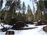 Uršlja Gora (Plešivec) 1699mCesta je pa očiščena. To je nad in pod cesto