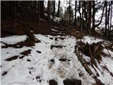 Osolnik 858mVišje je še malo snega