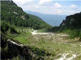Vogel-Šija-Rodicanad planino Suha