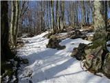 Krasji vrhprvi sneg malo pod gozdno jaso