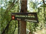 Polhograjska Gora (Sveti Lovrenc)Ob poti